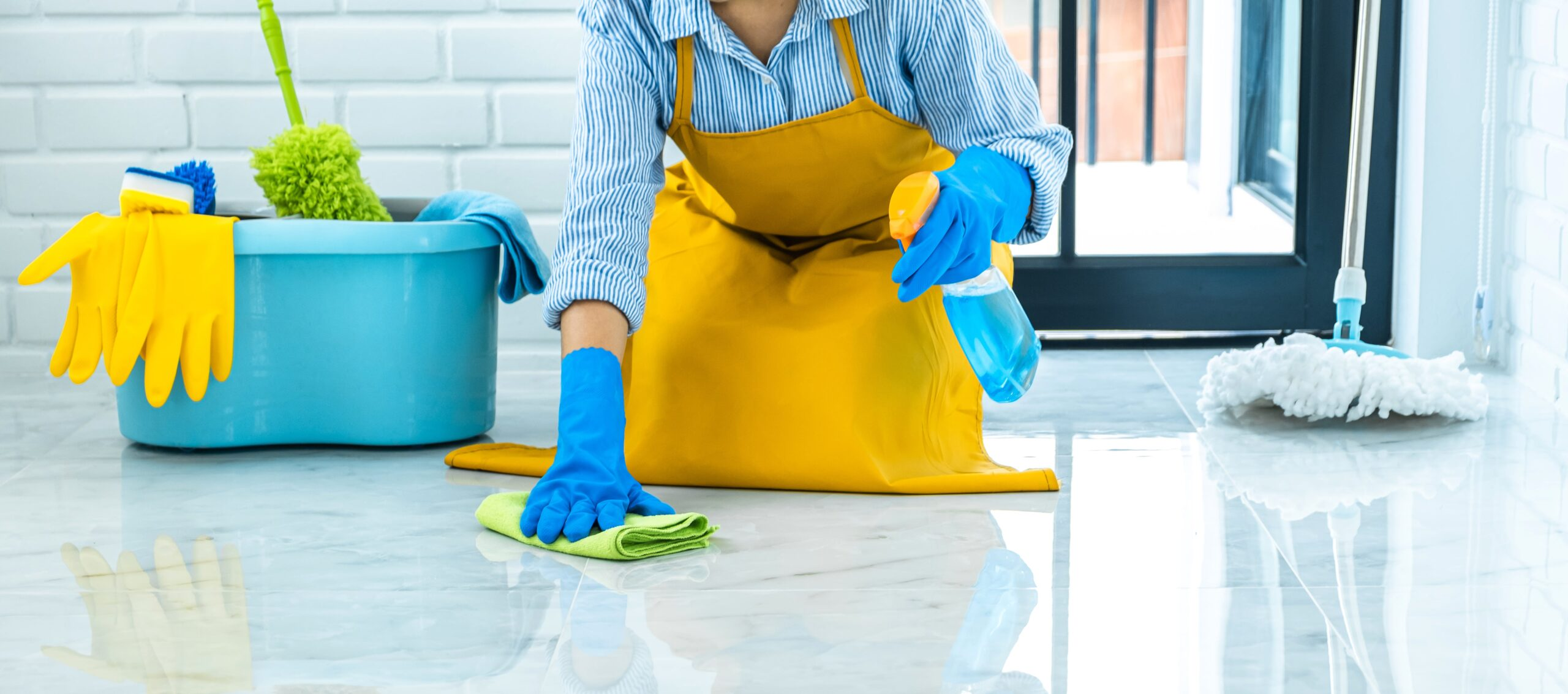 Professional Maid Services